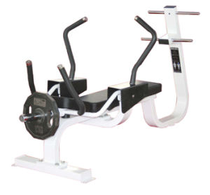 Excellent Precor Fitness Equipment / Abench Classic (SD43) pictures & photos