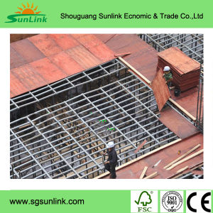 Scaffolding Platform and Aerial Work Platform with Plywood pictures & photos