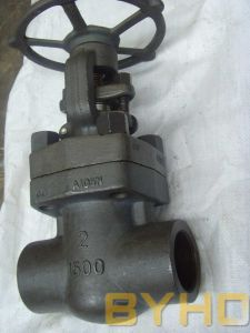 Class 800/900/1500 Forged Steel Gate Valve