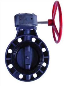 Hight Quality PVC/Plastic Butterfly Valve (FQ65005) pictures & photos