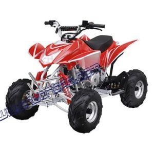 110cc New Sport XFH ATV / Quad (ATV-110D)