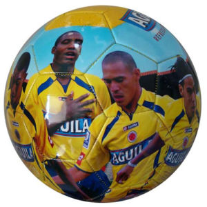 Soccer Ball, 32panels, PVC, Machine-Stitching, Photo Printing (B01301) pictures & photos