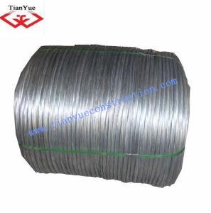 Galvanized Iron Wire pictures & photos