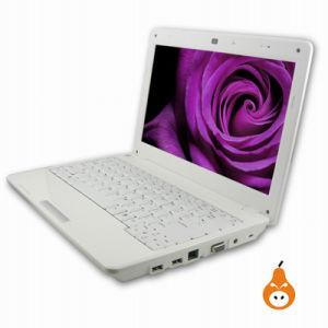 Laptop Lin Top PSG009