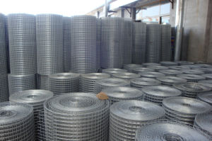 High Quality Galvanized Welded Wire Mesh 25mm * 25mm with Low Price pictures & photos