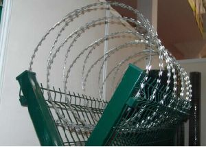 Wholesale Price Galvanized Razor Barbed Wire pictures & photos