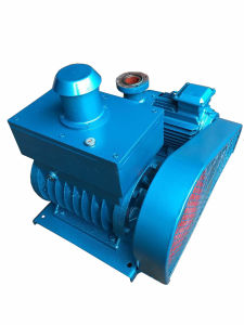 Rotary-Vane Vacuum Pump (2X) pictures & photos