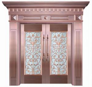 Stainless Steel Door (KD-SS052)