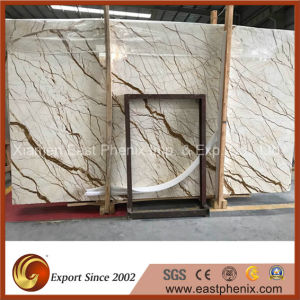 Quarry Direct Selling Natural Building Materials Sofitel Gold Marble Slab pictures & photos