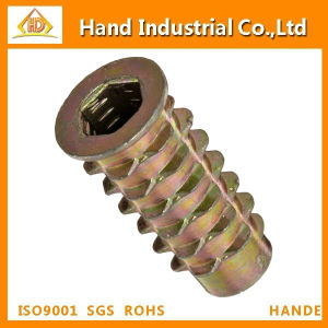 Made in China Lok Threaded Insert Zinc Hex-Flush Nut pictures & photos