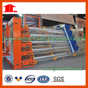 Jinfeng Professional Poultry Cage pictures & photos