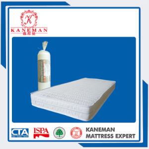 Student Cheap Quiltting Foam Mattress pictures & photos