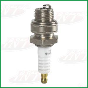 Top Int Garden Machine Spark Plug a-Bm6 Match with Ngk (BM6A)