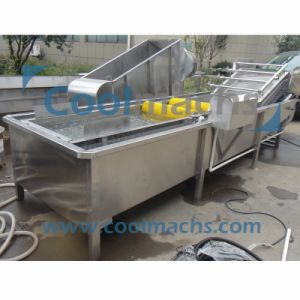 Vegetable and Fruit Washing/Cleaning Machine for Industrial Use/Washer pictures & photos