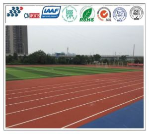 Running Track Made of EPDM Granules and PU Binder pictures & photos