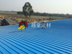 Clear Plastic Roofing Sheet pictures & photos