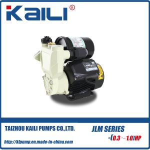 WZB Self-Priming Pump For Household pictures & photos