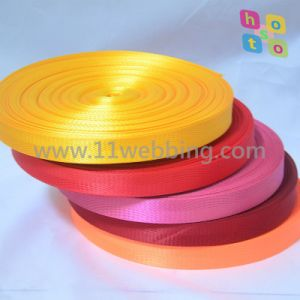 Color Herringbone Polyester Webbing by Stock Low Price Supply pictures & photos