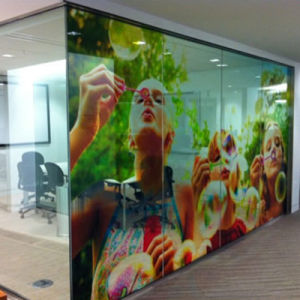 Customized Size Full Color Decorative Window Film Graphics Printing Signs pictures & photos