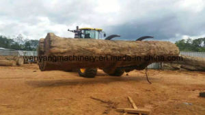 Available Working in Muddy Forestry Big Capacity Loader pictures & photos