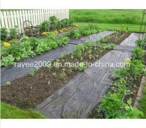 Superior Environmentally Safe White Woven Polypropylene Weed Mat pictures & photos