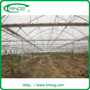 Agricultural film greenhouse for tropical area pictures & photos