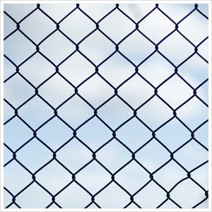 PVC Chain Link Wire Mesh pictures & photos