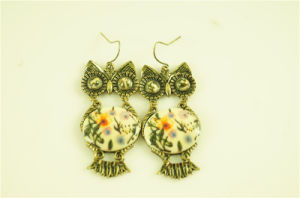 Owl with Acrylic Stone Fashion Earring pictures & photos