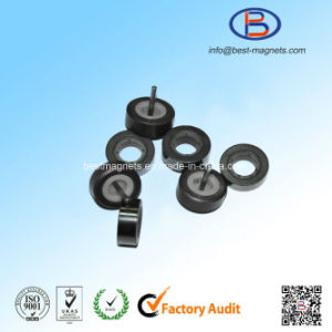 Ferrite Magnet Core for Motors/Sensors pictures & photos