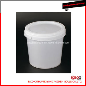 Plastic Injection Paint Bucket Lid Mould/Mold pictures & photos