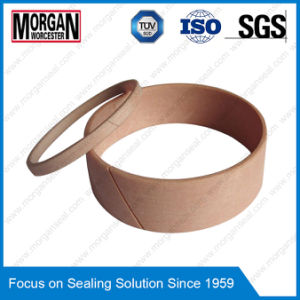FRI Series Hydraulic Wear Ring/Cylinder Rod Guide Ring Seal pictures & photos