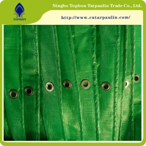 China Factory Produces China PE Tarpaulin with UV Protection To002 pictures & photos