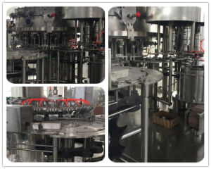 Automatic Carbonated Filling Machine (DCGF) pictures & photos