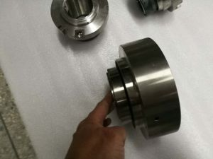 Trisun Cartridge Seal, PCM, Sulzer, Deepblue, Kubota Pump Mechanical Seal pictures & photos