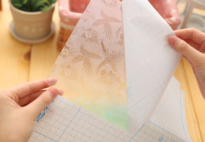 A4 Size Die Cut Clear Self Self-Adhesive Transparent Book Cover pictures & photos