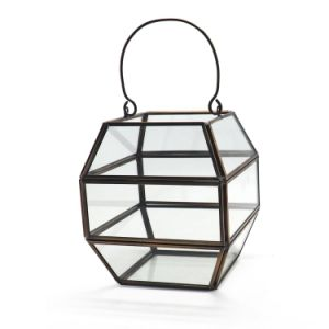 Faceted Geometric Glass Terrarium for Flower pictures & photos