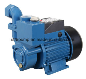0.5HP 220V/50Hz Iron Casting Self-Priming Peripheral Water Pump pictures & photos