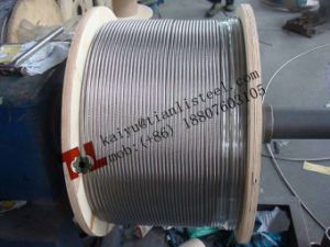 Ss316 1X19 Stainless Wire Rope pictures & photos