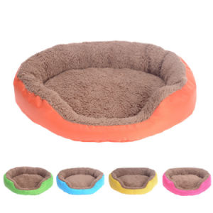 Four Colors Teddy Dog Puppy Bed pictures & photos