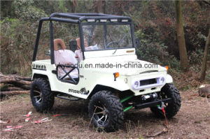 Best Selling 2016 Electric 250cc/300cc Sports ATV pictures & photos