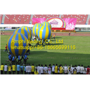 Custom Size Inflatable Ring Sport Games, Other Sport Games pictures & photos