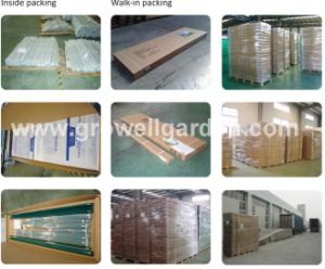 4mm Growell Walk -in Polycarbonate Greenhouses (6′ X 10′ SP610) pictures & photos