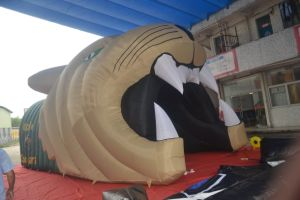 Pop up Tiger Mascot Football Blast Tunnel for Sale pictures & photos