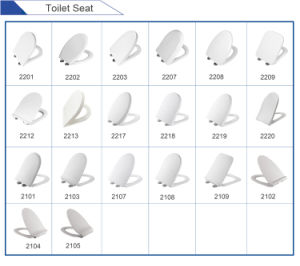 Plastic Toilet Seat Cover Slow Closed pictures & photos
