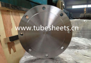 Blind Flanges Connect The Steel Pipe Flange Manufacturer pictures & photos