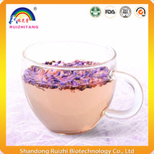 Herbal Tea Flavor Lavender Tea for Health Care pictures & photos