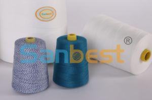 Spun Polyester Bag Closing Thread pictures & photos