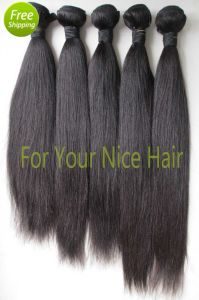 Unprocessed Brazilian Virgin Hair Weft pictures & photos