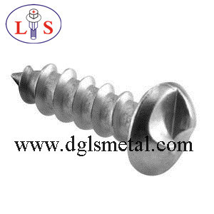 Anti-Theft Safety Screw in High Quality pictures & photos