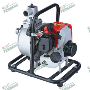 Water Pump for Clean Water (PW-10CX-1) pictures & photos